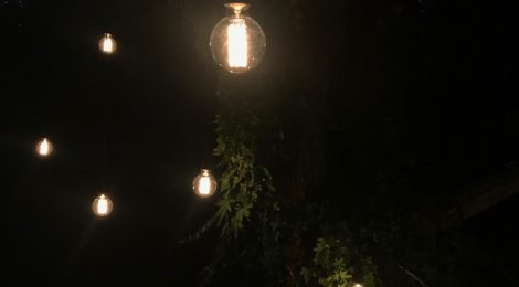 Black Cabled Naked Bulbs Outdoors